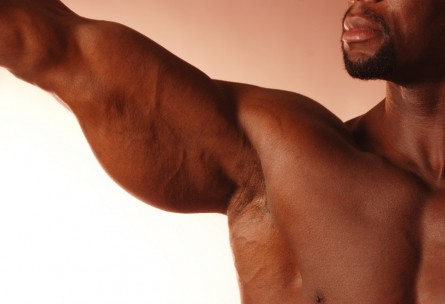 The Best Exercises To Build Big Arms
