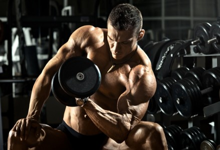 Muscle Shaping Mythology concentration curl